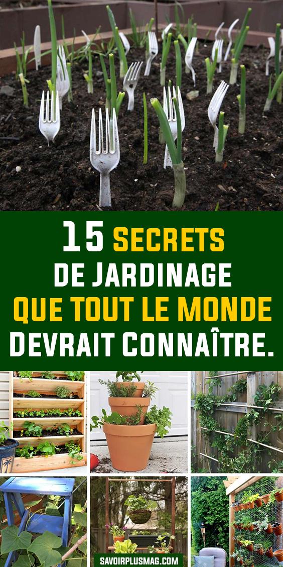 15 Secrets De Jardinage Que Tout Le Monde Devrait Connaitre Potager Facile Design De Jardin Potager Trucs Et Astuces Jardinage