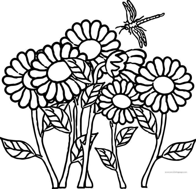 Flower Dragonfly Coloring Page See the category to find more ...