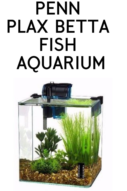 Penn Plax Betta Fish Aquarium Aquarium Desktop Aquarium Cool Desk Accessories