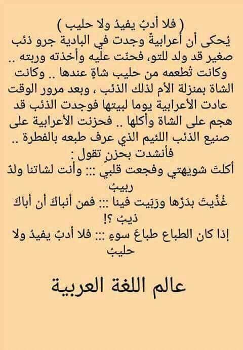 اما ذيب قليل الأدب يأكل امه بالرضاع هههههههه Positive Words Beautiful Arabic Words Quotes