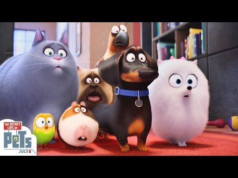 The Secret Life Of Pets New Trailers 14 Pictures And 9 Posters