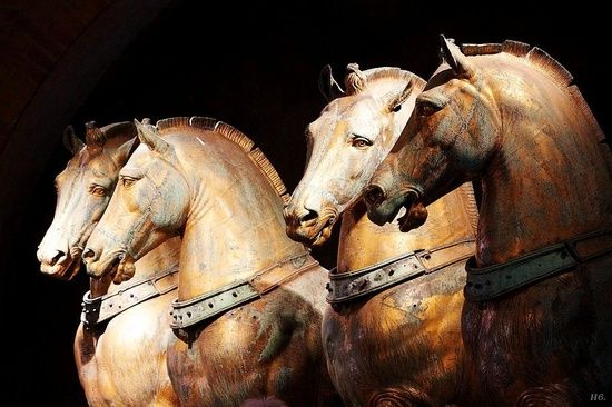 Horse riding is an art:    where the anger starts, learning ends.
