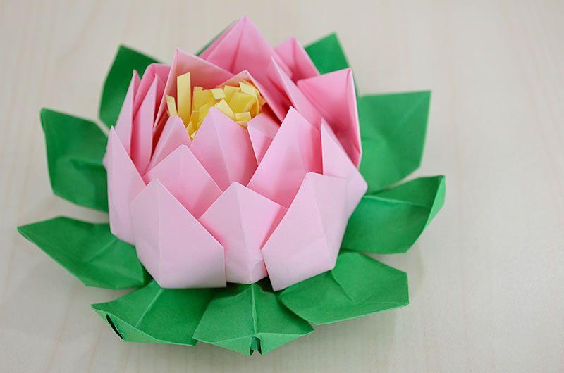0rigami Fiori.Come Fare Un Fiore Di Loto Origami Tutorial Easy Origami