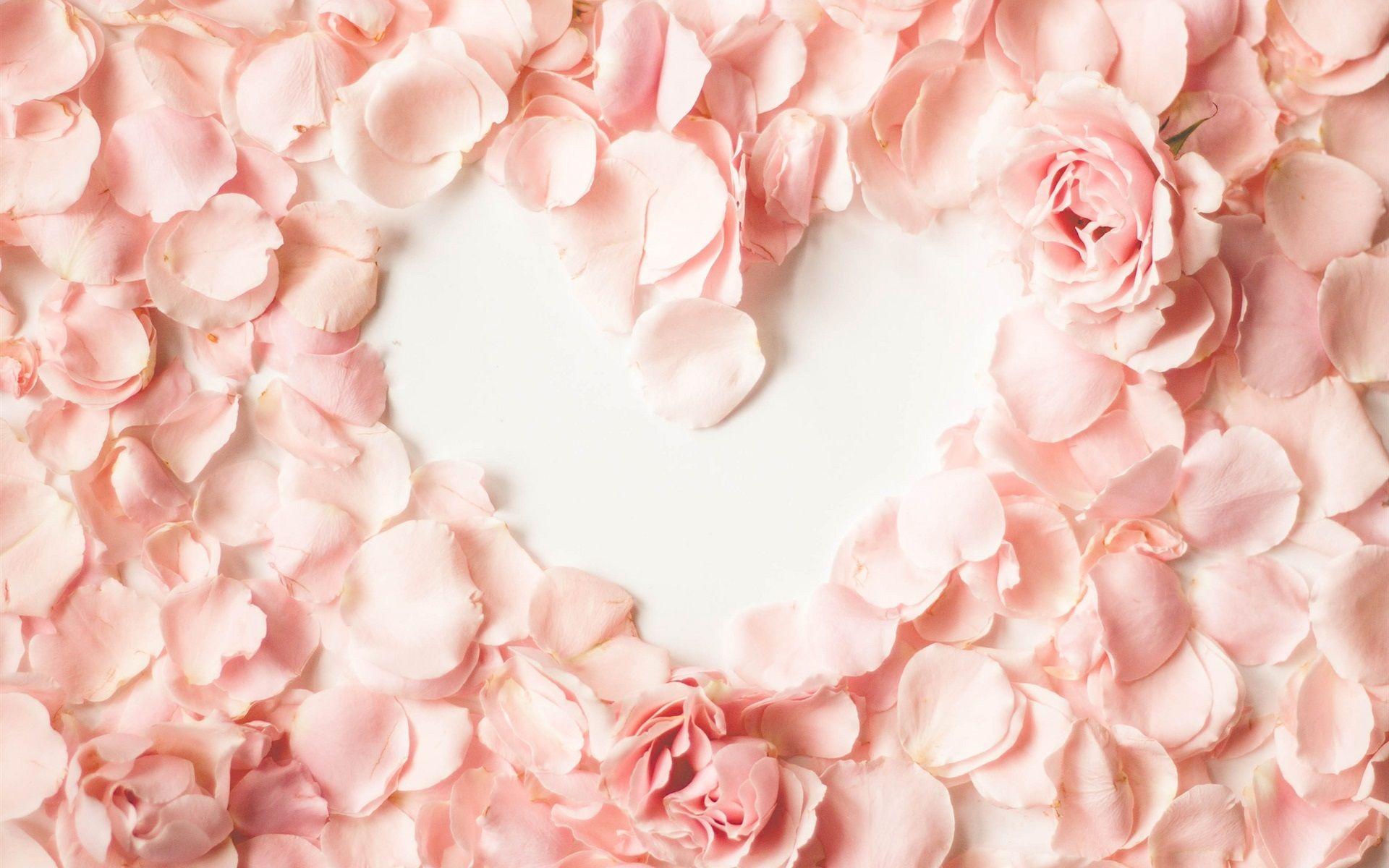 ピンクの花びら バラ 愛の心 壁紙 1920x1200 花びら 壁紙