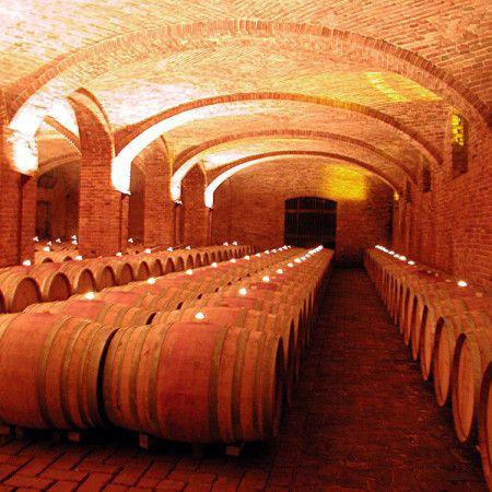 Piedmontese barriques cellar