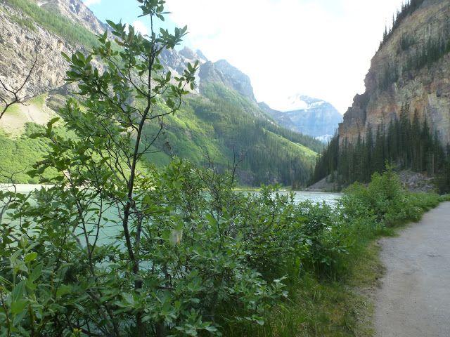 LAS ROCOSAS DE CANADA. YELLOWSTONE Y GRAND TETON. -Diarios de Viajes de Canada- Alejandria - LosViajeros