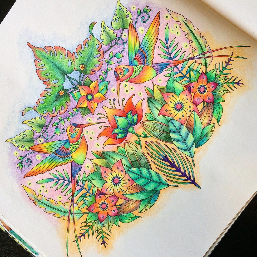 #coloring #colouring #johannabasford #magicaljungle #colorindomeujardimencantado #johannabasford_repost #bayan_boyan #arte_e_colorir #coloringtoolkit