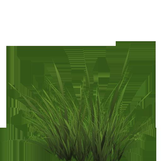 Blade of grass Brushes - Free Photoshop Brushes at Brusheezy!