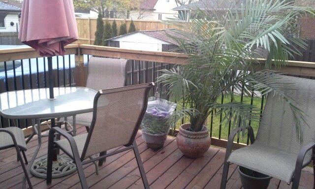 Bsck yard deck