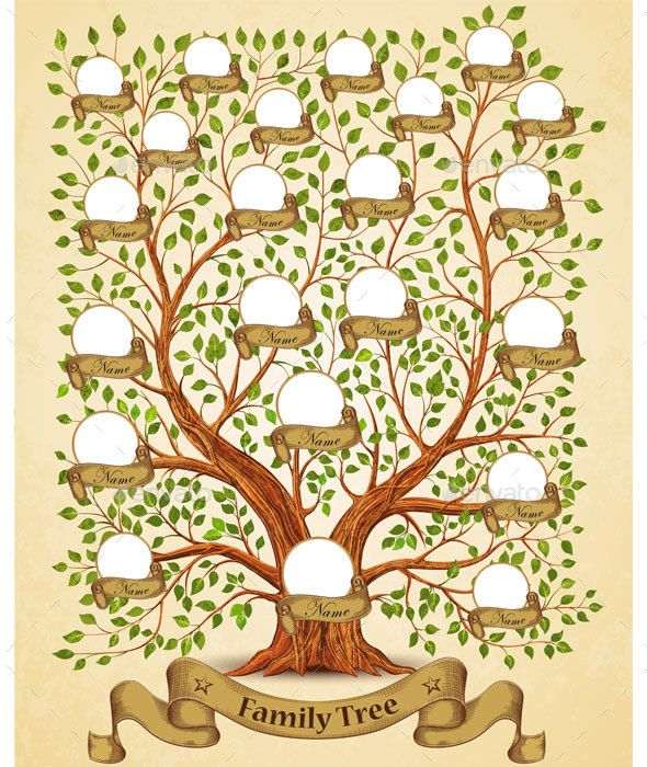 Family Tree Template Family Trees Template And Genealogy