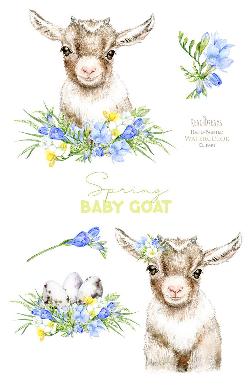 Goat Baby Animal Watercolor Clipart Easter Eggs Nursery Etsy Goat Art Goat Paintings Cute Goats