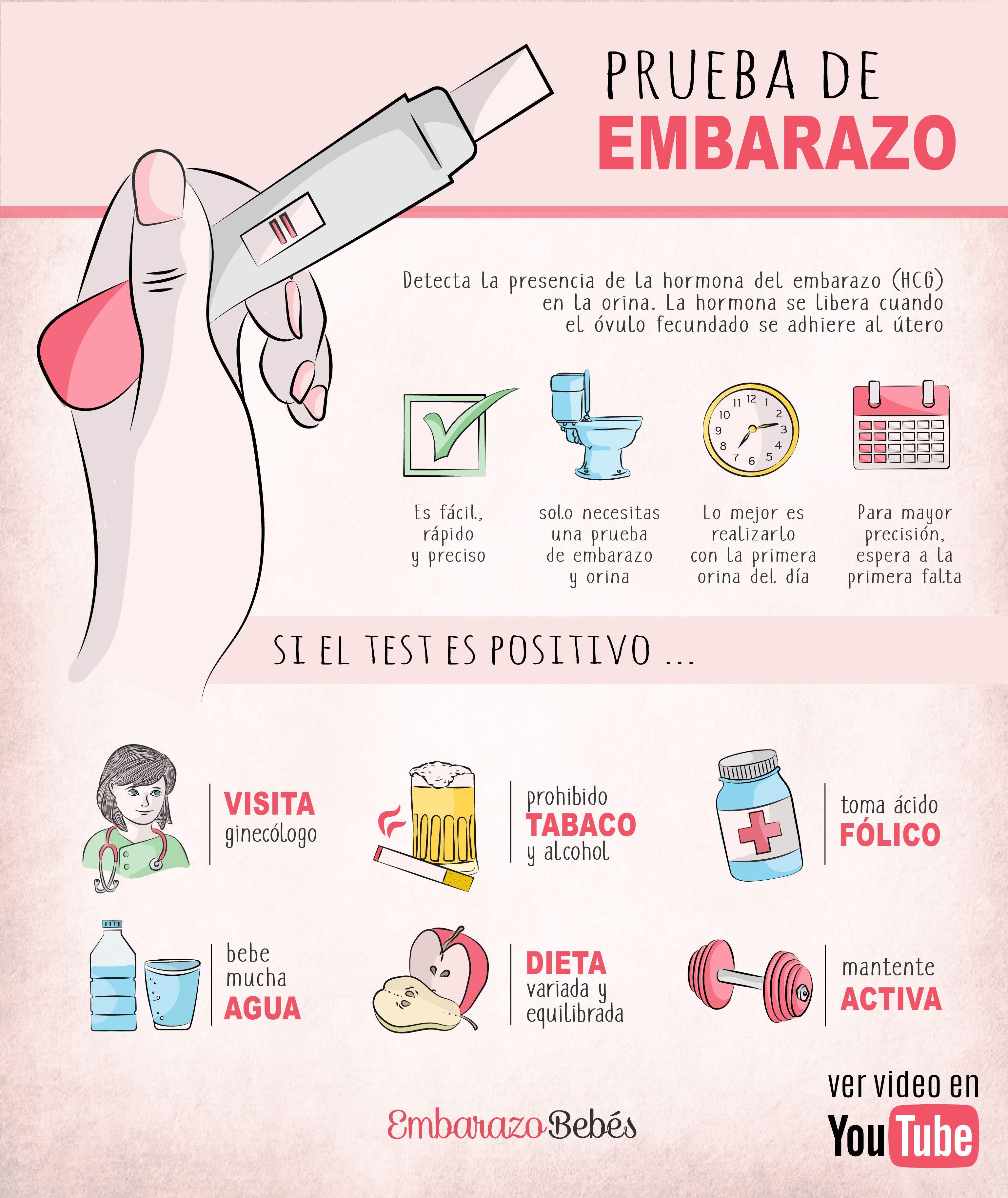 Pin en EMBARAZO ⭐️ Infografías