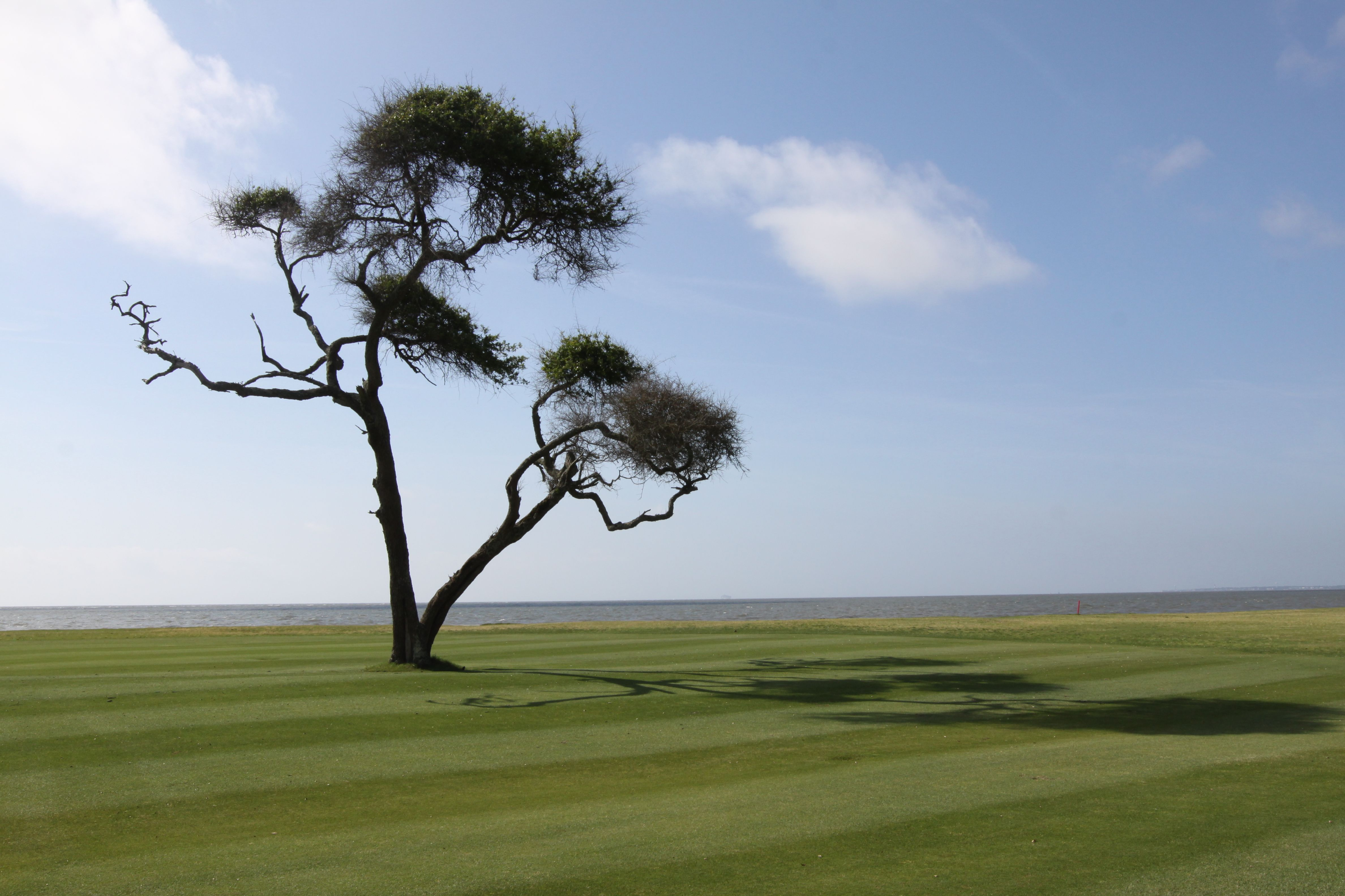11+ Bloody point golf course ideas