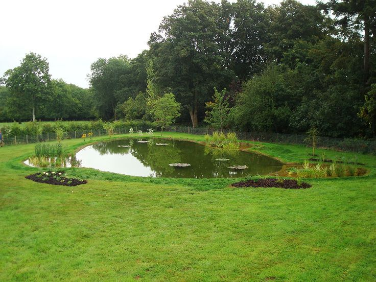 Image Result For Wildlife Pond Near House Pond Water 400 x 300