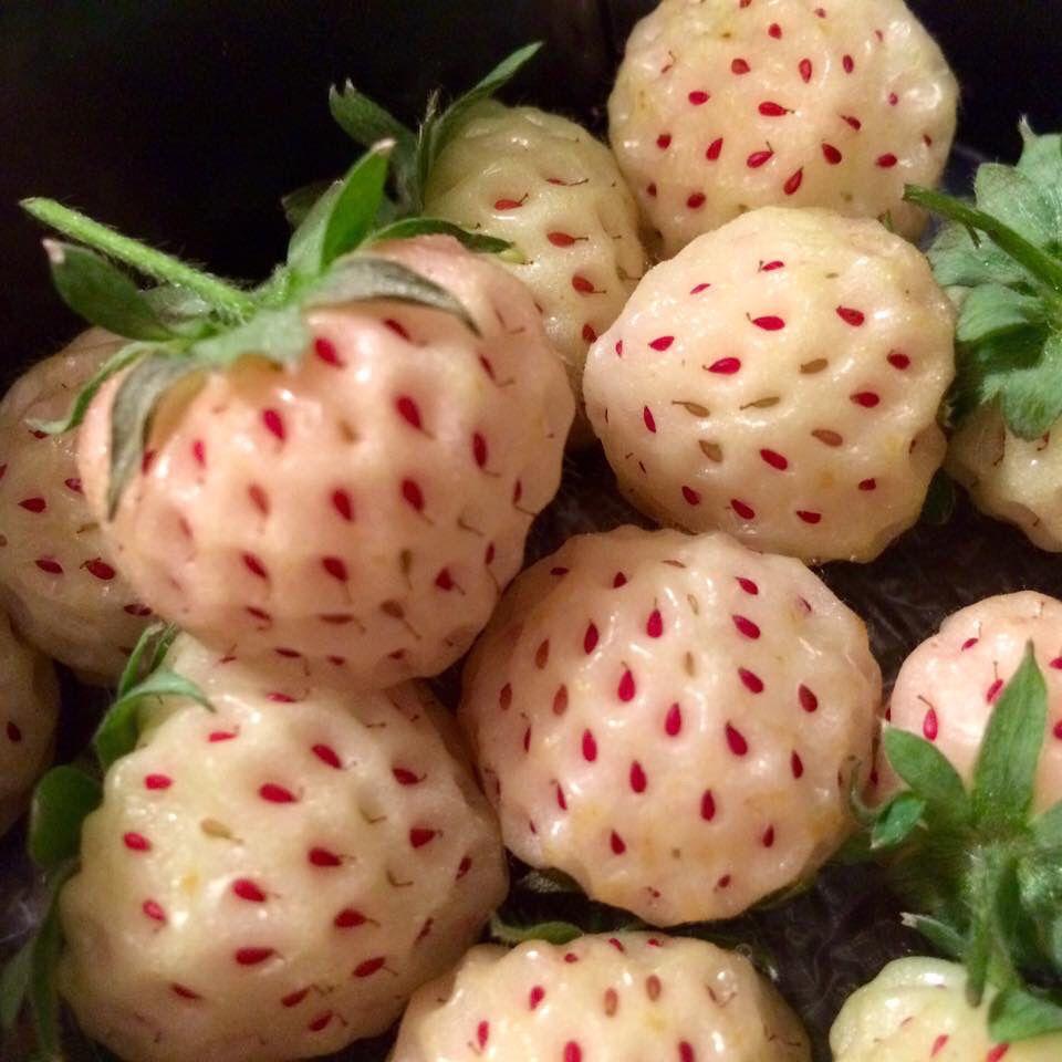 Fragol-Ananas e Lampo-Fragola!! Che profumo!! #novità #fruttaworld #troppostrane #prelibatezze #primizie #troppobuone