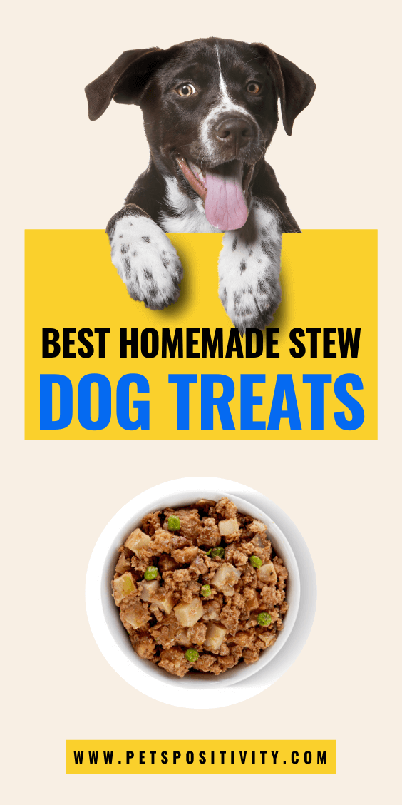 EASY HOMEMADE STEW DOG TREAT RECIPES