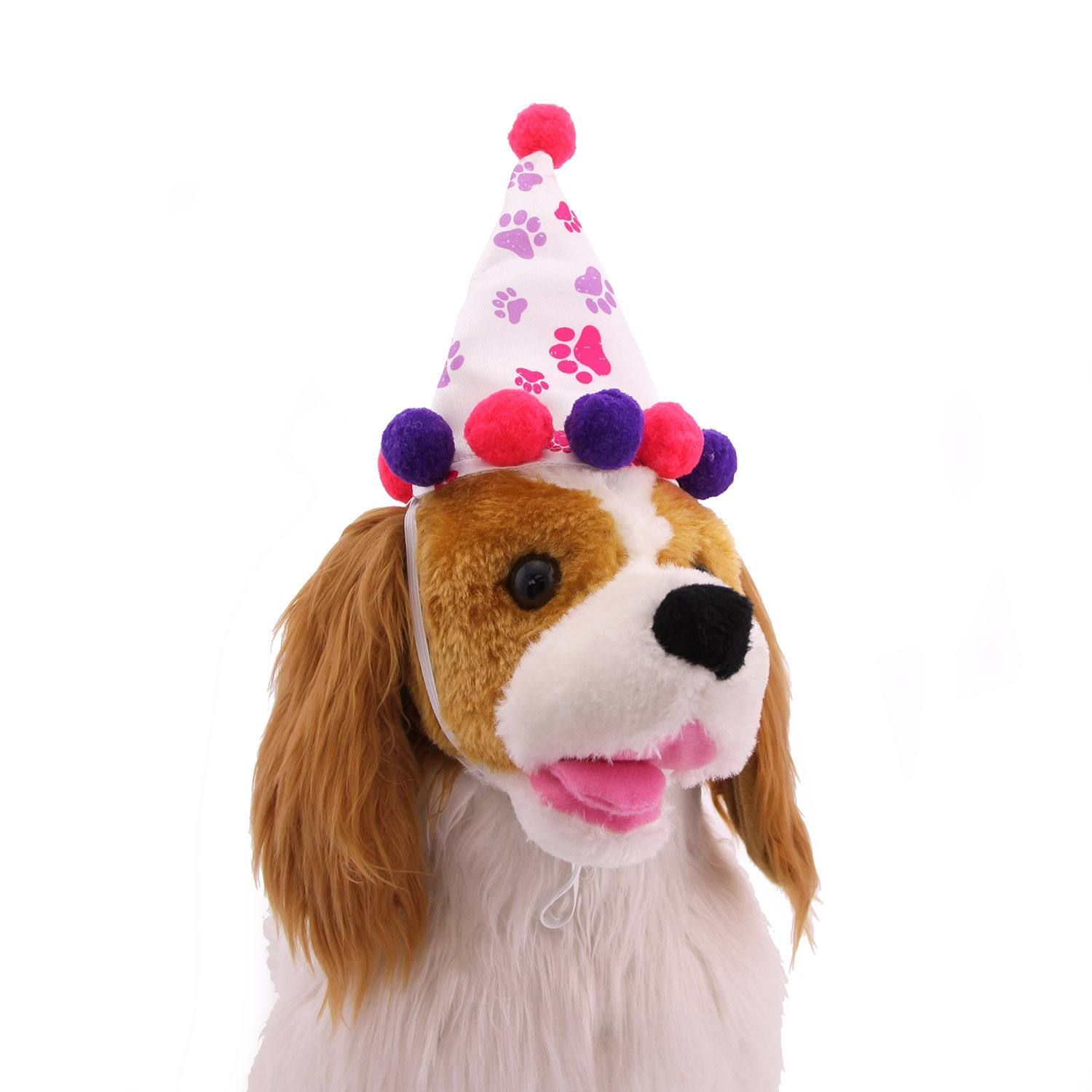 Girl Paw Print Birthday Dog Hat Bring A Smile To Your Pups Face On Their