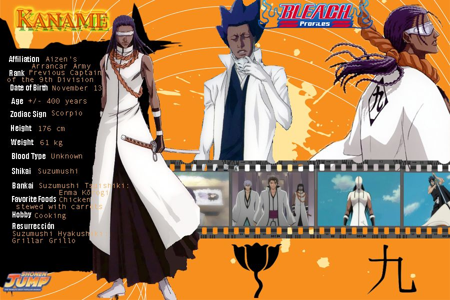 bleach  characters profile  tosen kaname commander of aizen u0026 39 s arrancar army  captain of the 9th