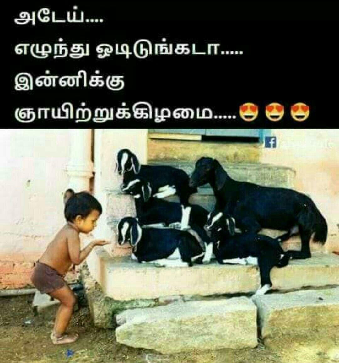 So Happy Memes In Tamil