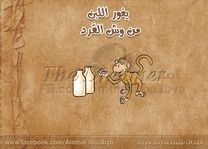 على راى المثل Funny Pictures Arabic Words Kind Heart