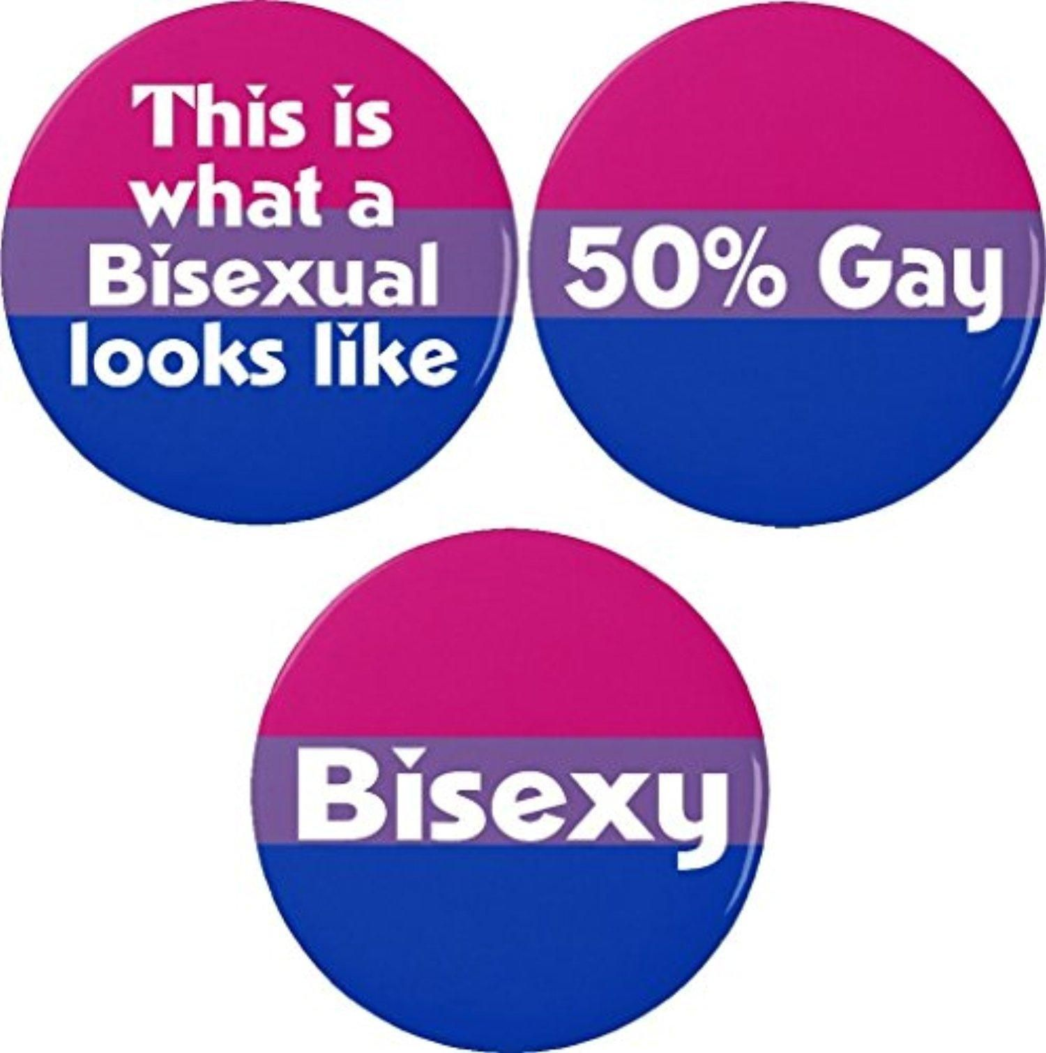 Lgbt Quotes Set 3 Bisexual Flag Quotes Magnets Bisexy Looks Like Lgbt Pride