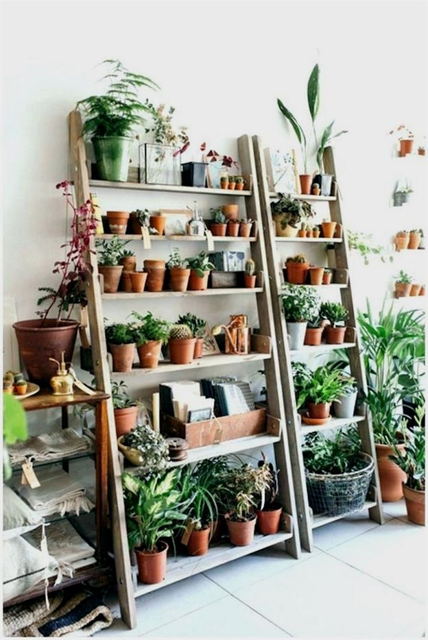 10 Cool DIY Indoor Plant Shelves To Enhance Your… #mosquitoplants