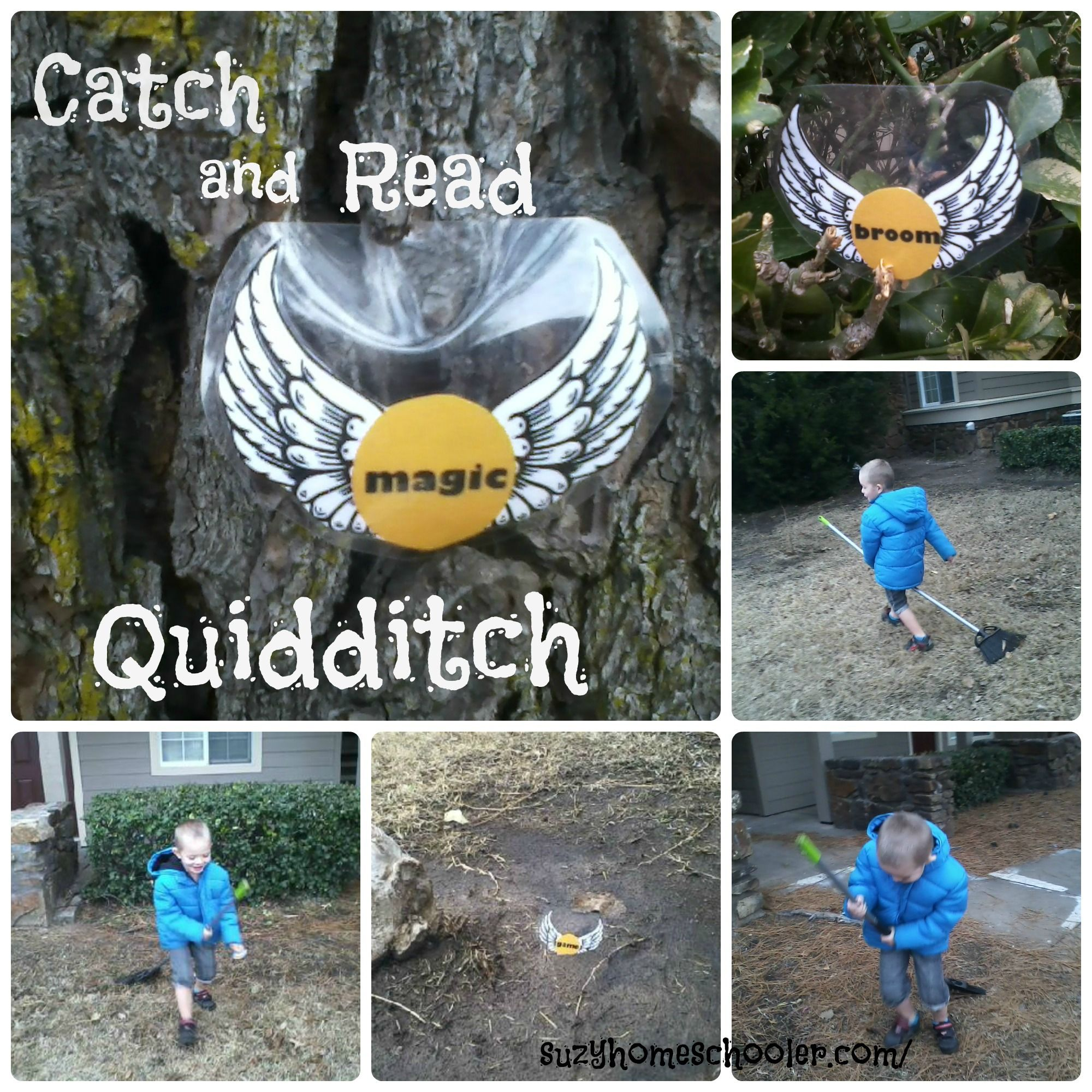 Catch And Read Quidditch From Suzy Homeschooler Free