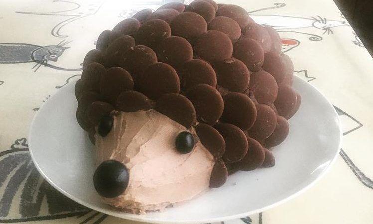 Harry the hedgehog cake #hedgehogcake
