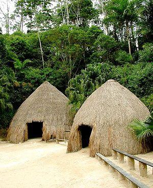 oca tribo - Pesquisa Google