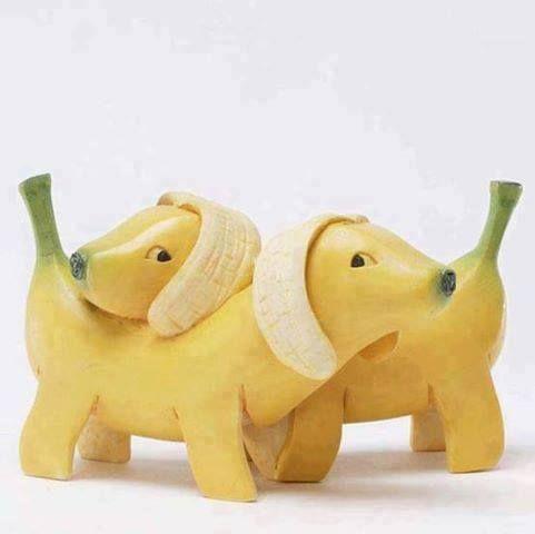 Banana doggies!