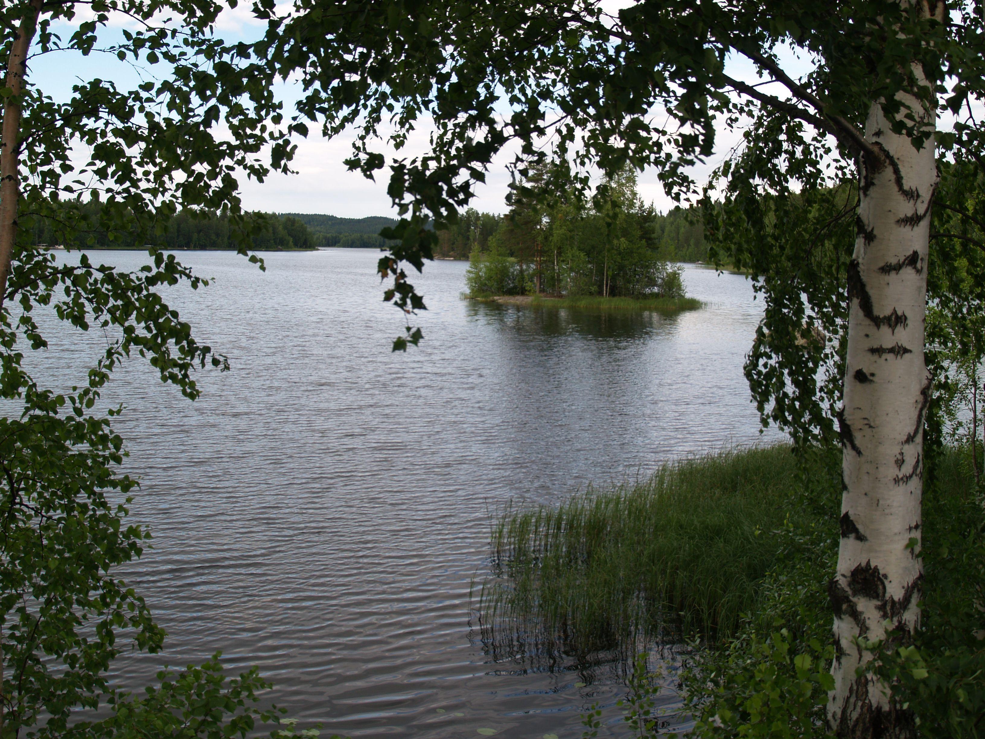Maisema Päijänteeltä väliltä Korpilahti - Sysmä