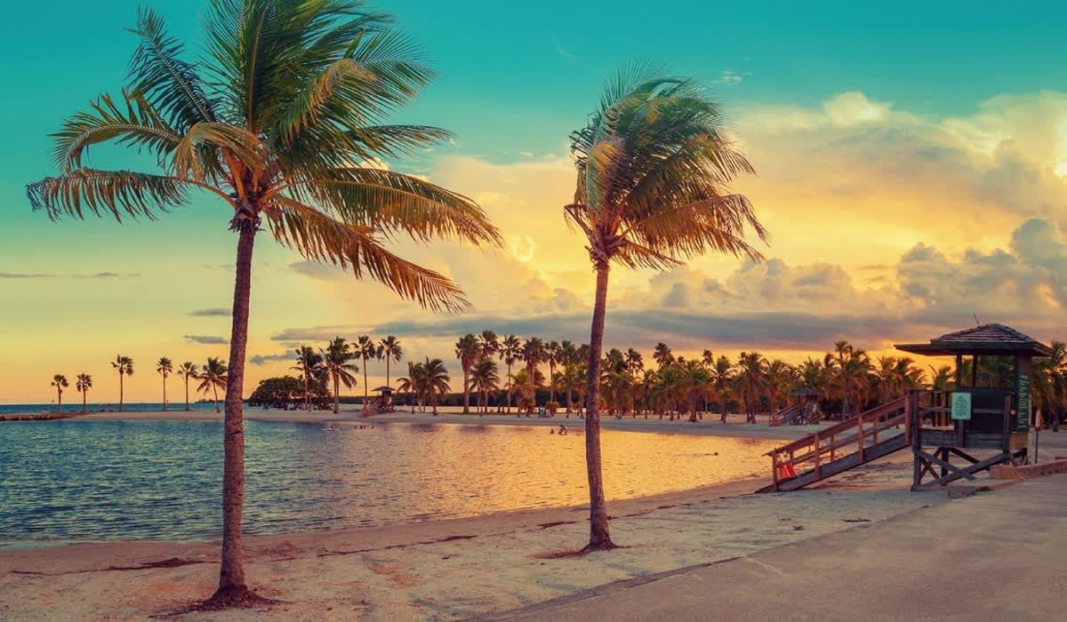 From January To February The Weather In Miami Is Usually In The High 70 S With Very Low Humidity And Little Rain Cool Places To Visit Miami Beach Miami Hotels