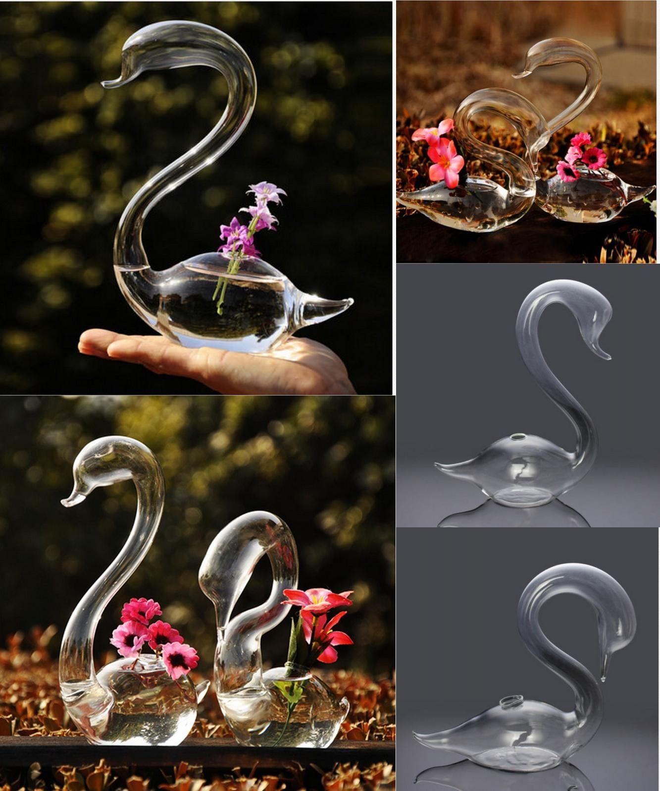 Visit to buy 2pcs loving swans flower watering plants glass vase visit to buy 2pcs loving swans flower watering plants glass vase home decor free floridaeventfo Choice Image