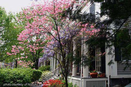 SPRING  DECORATING | Spring decorating ideas, Porch decorating ideas, Spring crafts