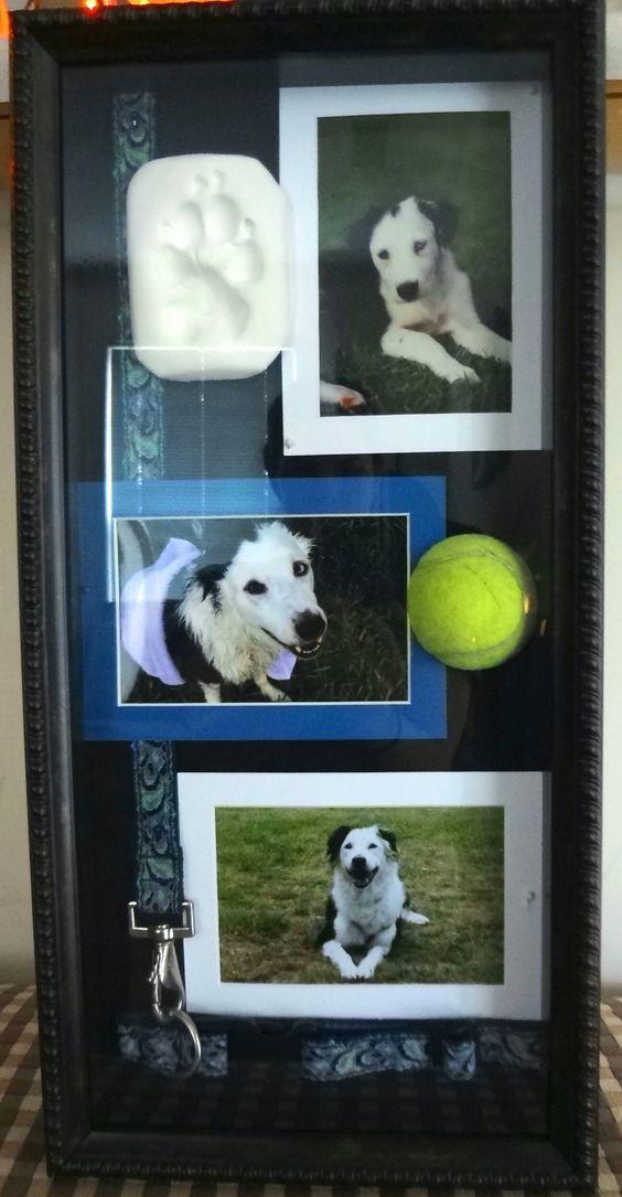Enmarca el recuerdo de tu mascota y así nunca dejará de ser un ...