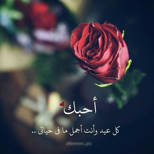 كل عام وأنت بخير Love Words English Love Quotes Love Husband Quotes