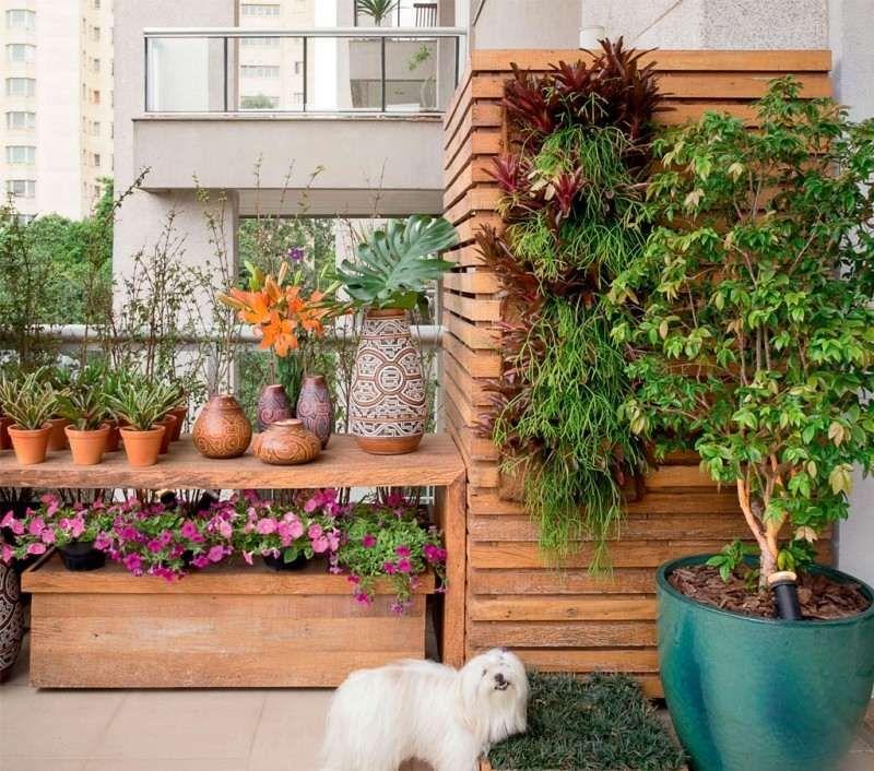 plante verte balcon plein soleil