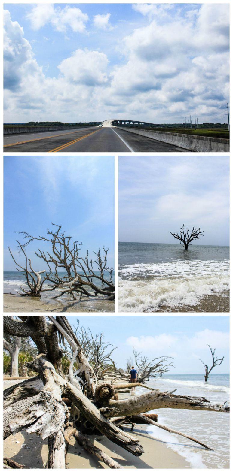 Botany Bay Botany bay, Edisto island, South carolina beaches