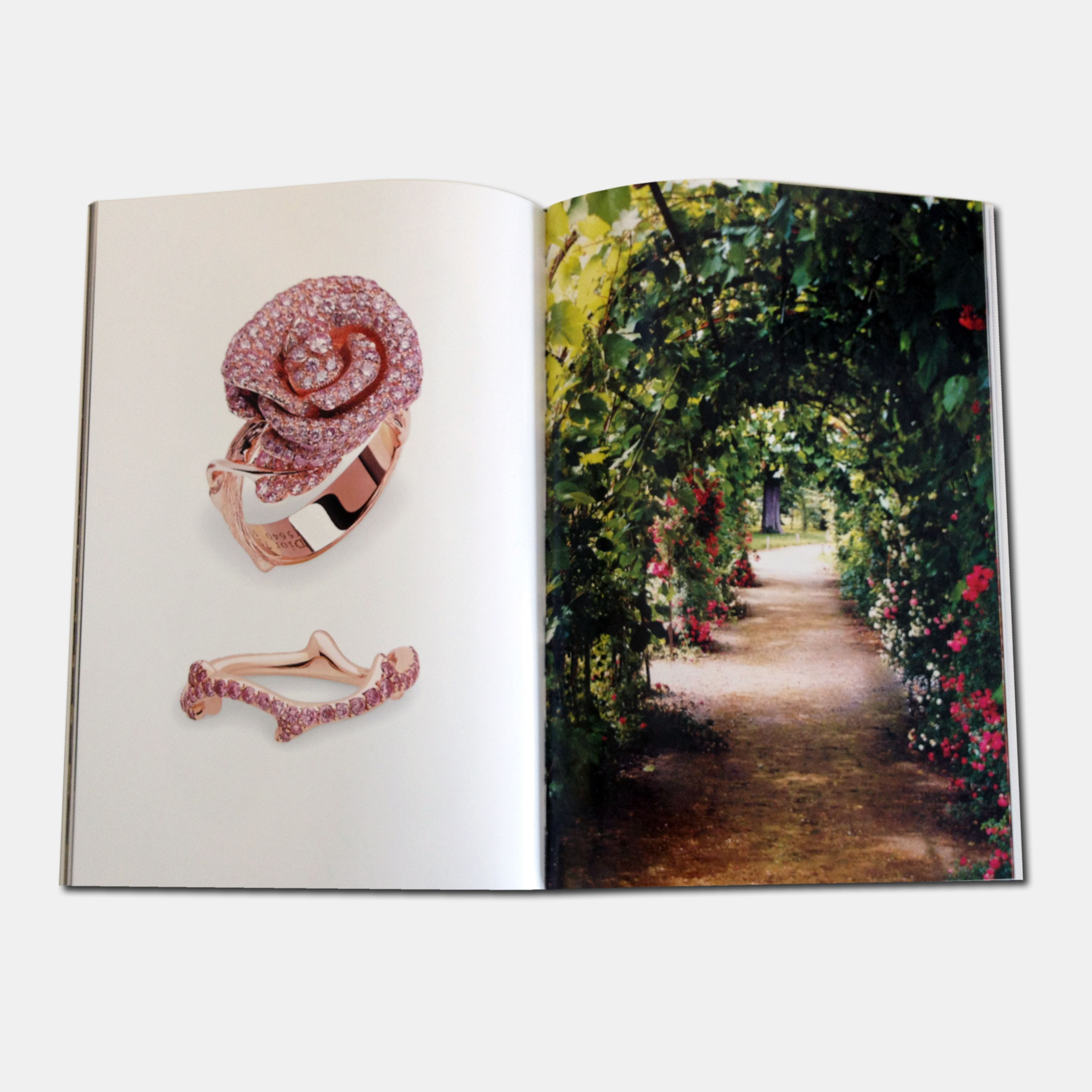 Discover 'Dior', a set of 3 volumes revealing exclusive stories about many decades of   Fashion, Jewellery and Perfumes of the House.