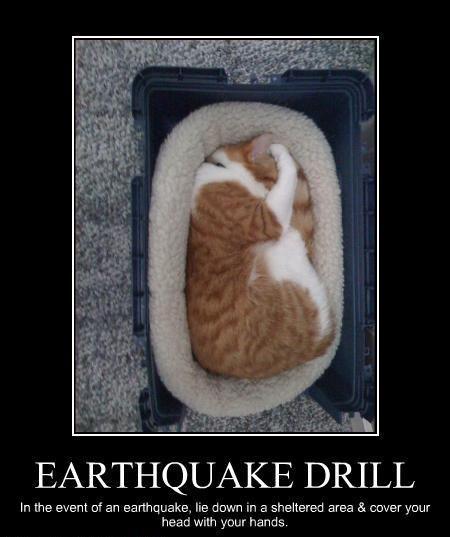 tamworth earthquake meme california - photo#31