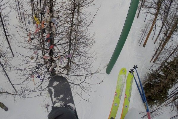 Bra Trees -- An American Ski Resort Tradition #tree