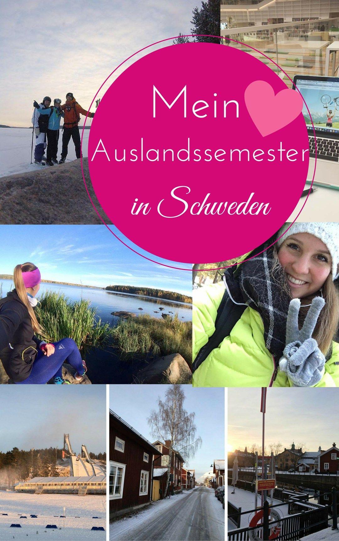 Schweden Mit Hund Erfahrungen