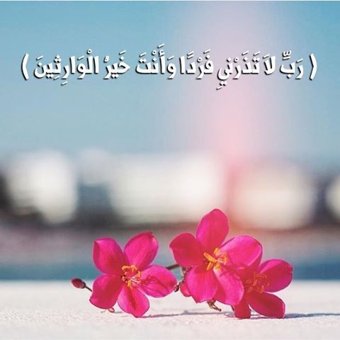 Pin On Islamic Love Quotes