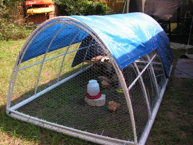 New pvc chicken tractor just finished chicken tractors for Cheap chicken tractor