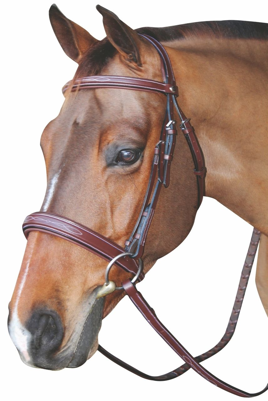 HDR Mono Crown Bridle With Wide Padded Noseband | English