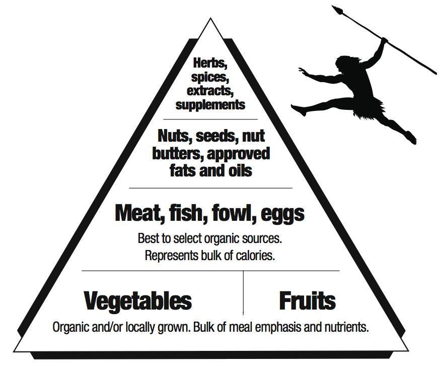 Grok food pyramid - Marku0027s Daily Apple Paleo (Evolutionary - fresh blueprint primal diet