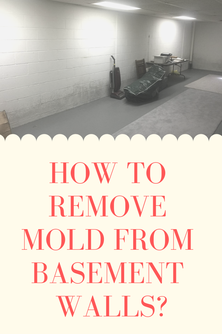 How To Remove Mold From Basement Walls Mold Remover Basement Walls Mold In Basement