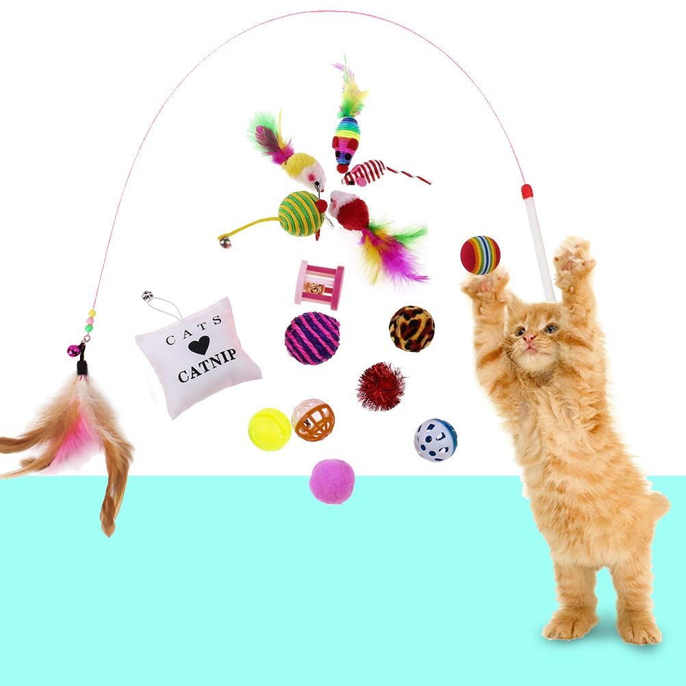 Dengguoli 16 Pcs Cat Interactive Mouse And Chew Balls Fishing Toys For Indoor Outdoor Cat Kitten Trick Teething And Exer Outdoor Cats Cats And Kittens Pet Toys