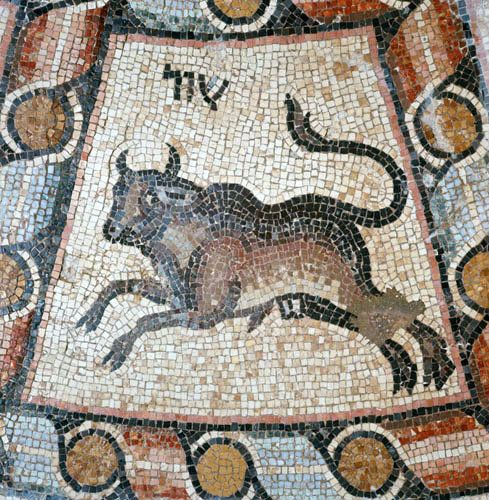 Israel Hammath south of Tiberias Taurus from a 4th century mosaic of the signs of the zodiac in the synagogue