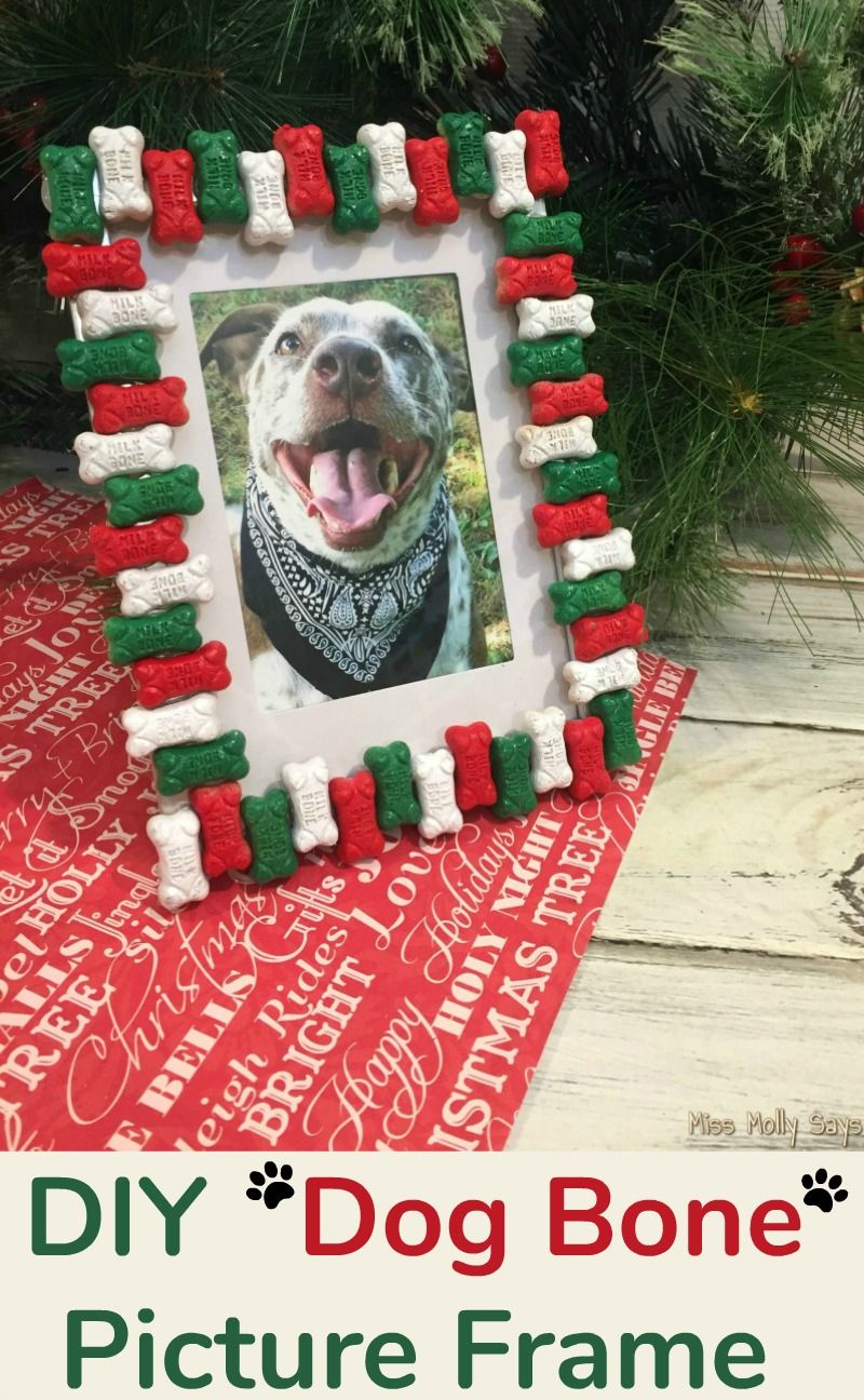 A Diy Dog Bone Picture Frame Is The